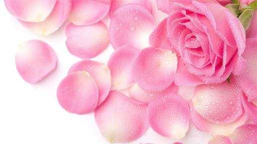होठों को खूबसूरत बनाने के लिए अपनाएं ये घरेलू नुस्खे