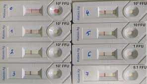 7 टेस्टेड और टेस्ट किए गए तरीके स्वाभाविक रूप से टेस्टोस्टेरोन हार्मोन के स्तर को बढ़ाते हैं