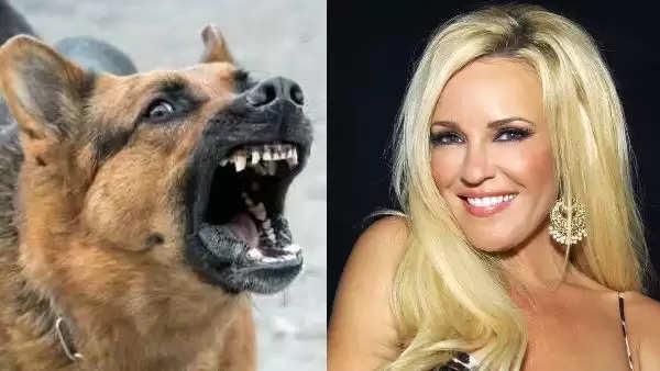 कुत्ते का भूत करता है इस महिला की रक्षा, सबूत के तौर पर दिखाई CCTV में कैद फोटो